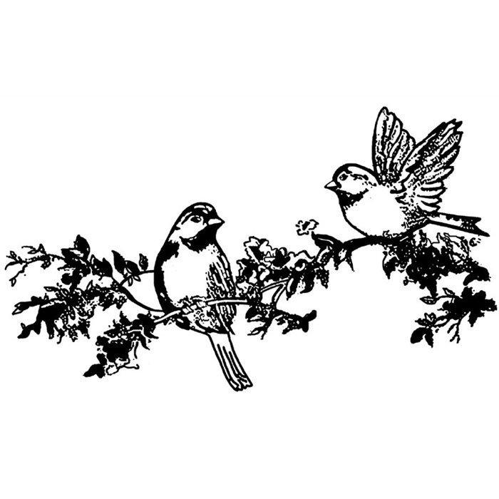 Черно-белые картинки птиц для распечатки с двух сторон просветительская