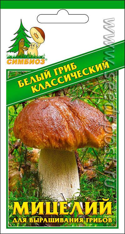 Мицелий зерновой Белый гриб Классический, 30 мл