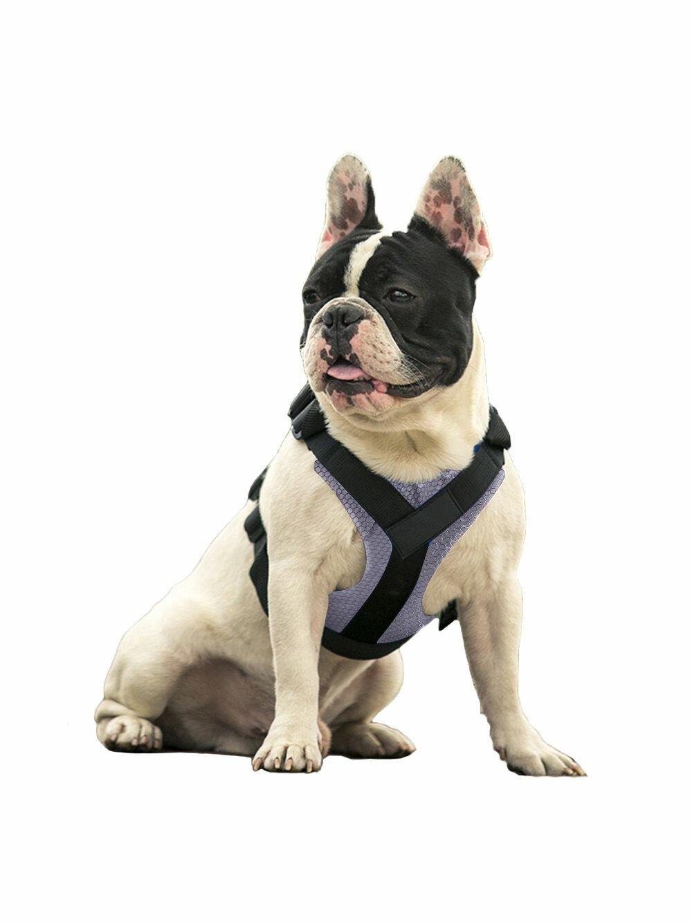Шлейка Pets & Friends ошейник для собак серый под грудь, размер XL PF-DHF-08, серый