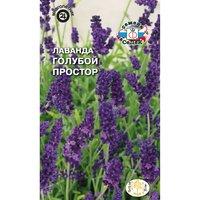 Где в ярославле купить цветы лаванды для интерьера заказ цветов по интернету москва