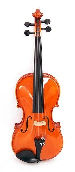 STRUNAL 1750-4/4 Скрипка концертная 4/4, модель Страдивари, принадлежности из черного дерева, ус натураль. деревянный, волнисты