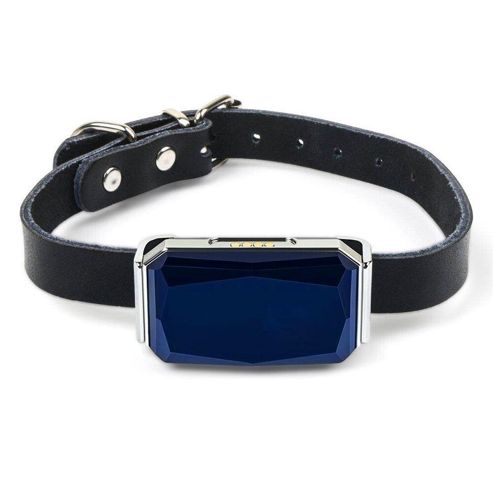 Gps трекер для собак HaDog-03 c ошейником в подарок (GPS ошейник для собак)