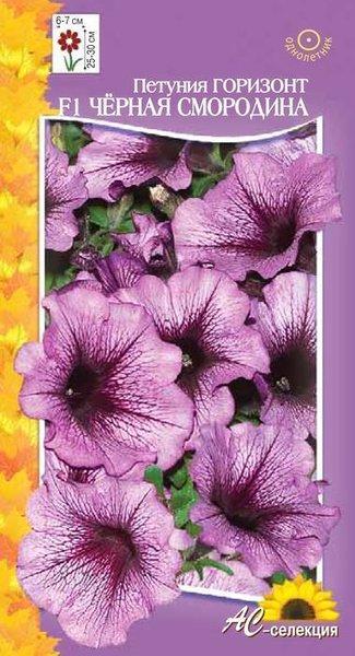 термобелья псков семена цветов купить сегодня наиболее удачным