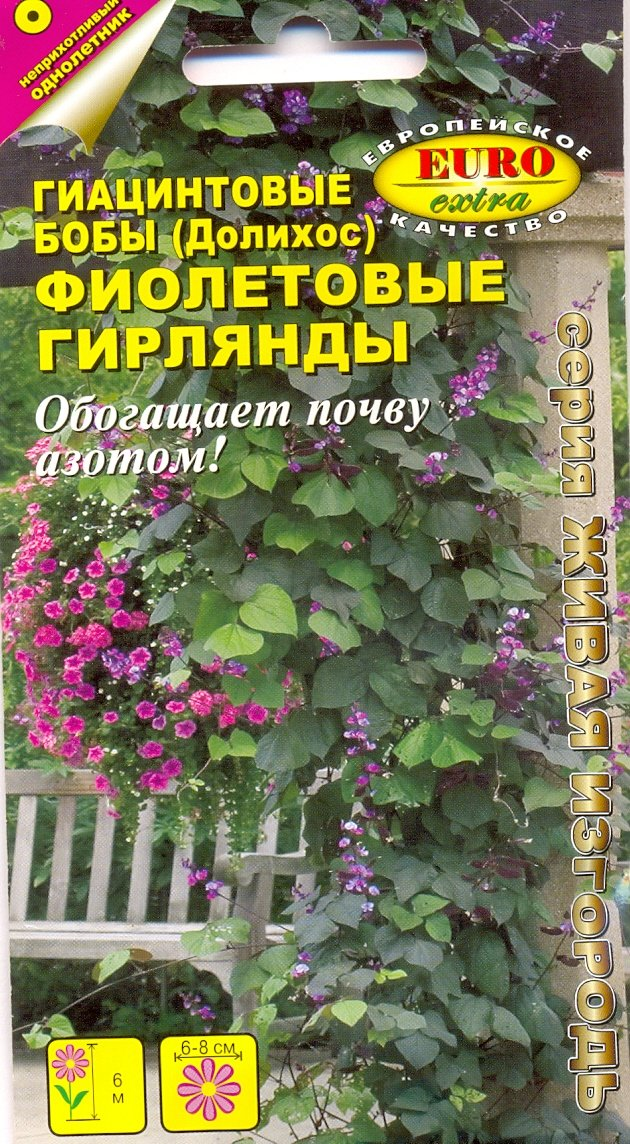 """Семена. Бобы гиацинтовые """"Фиолетовые гирлянды"""""""