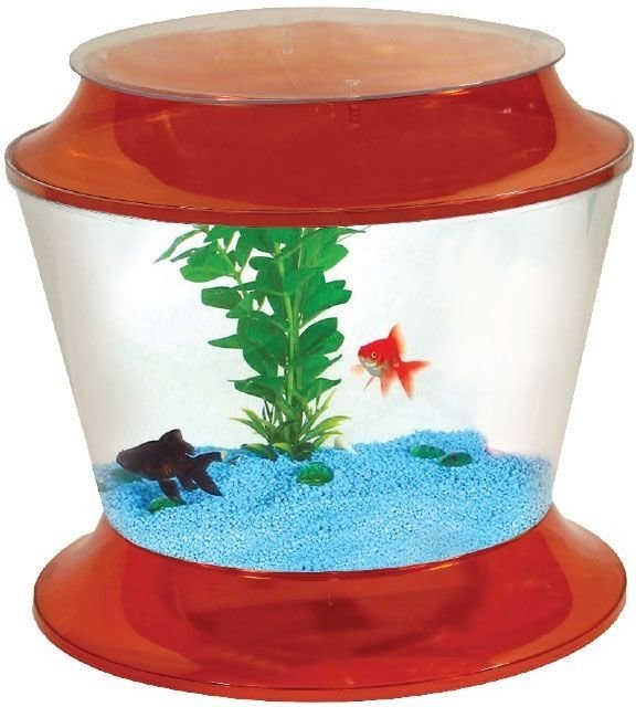 Аквариум AA-Aquariums Gold Fish Bowl 17 л (17 л, Оранжевый)