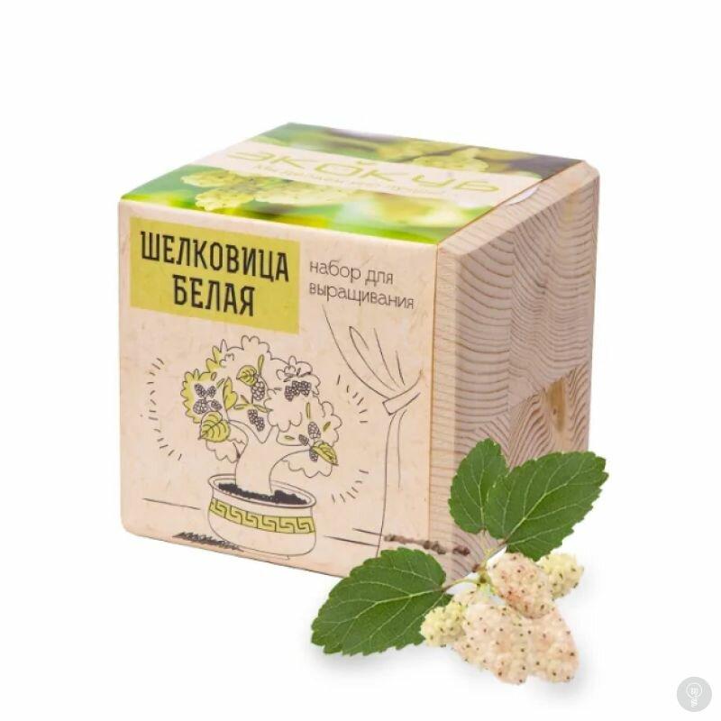 Экокуб Шелковица Белая