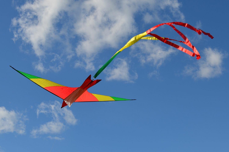 меня картинка фото воздушного змея только вышли