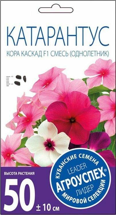 Корзине, купить семена комнатных цветов в киеве