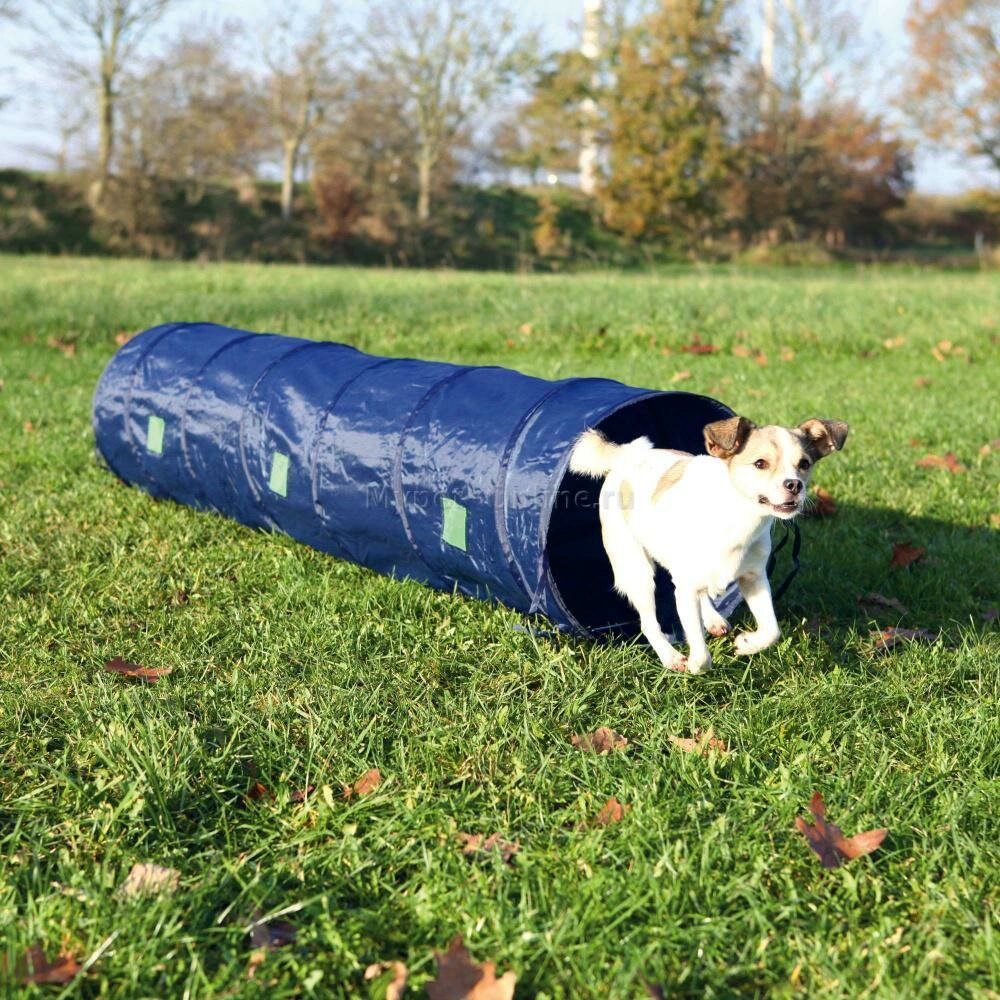 Тоннель для собаки Trixie Agility, размер 40х200см., синий