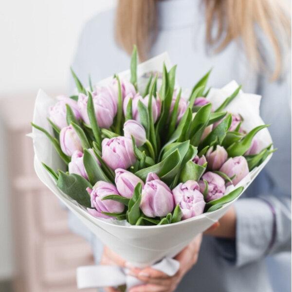 25 Тюльпанов розовых