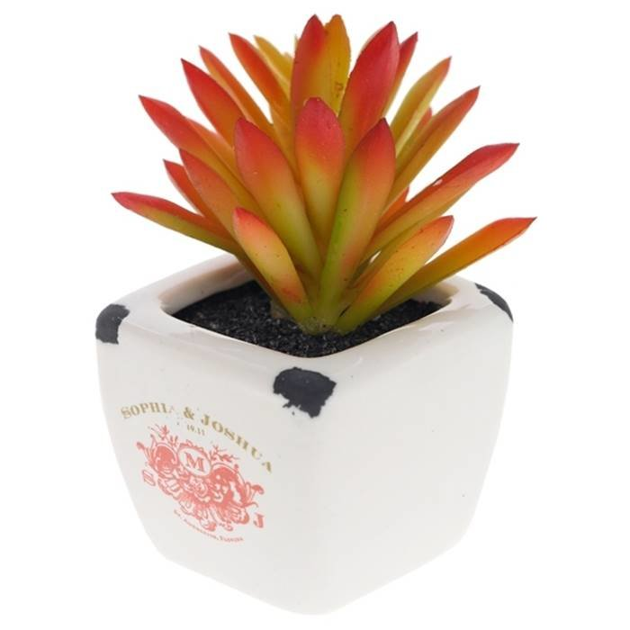 """- Цветочная композиция 691357 Искусственный цветок в керамическом кашпо """"Кактус"""", L5 W5 H8 см полимерные м"""
