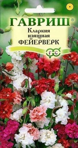 Семена Кларкия изящная Фейерверк, смесь, 0,1г, Гавриш