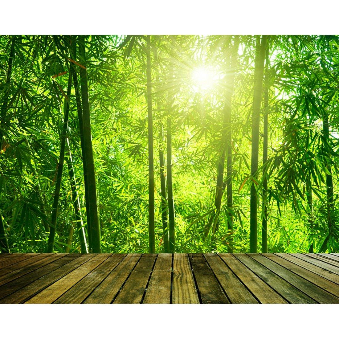 Фотообои Divino Decor Выход в бамбуковую рощу артикул С1-372