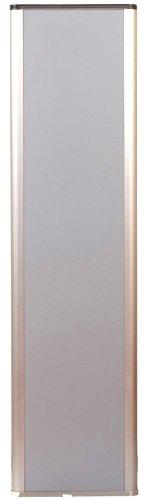 Акустомагнитная противокражная система SOLARIS AM G10 (приемопередатчик + приемник + БП) 180 см