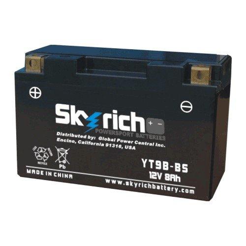 Аккумуляторы Аккумулятор SKYRICH HJT9B-FP-S (YT9B-BS,YT7B-BS)