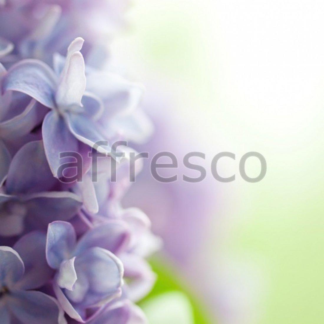 Фреска Affresco Солнечные цветки арт. F11846