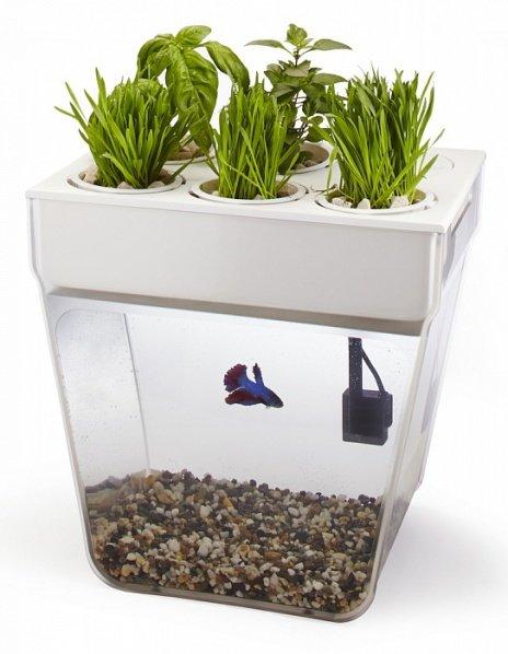 Акваферма Back To The Roots AquaFarm 2.0 [домашняя акваферма/11 л]