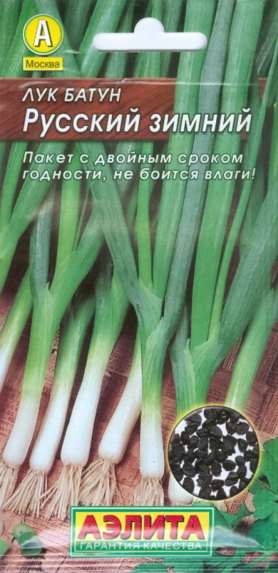"Семена. Лук батун многолетний ""Русский зимний"""