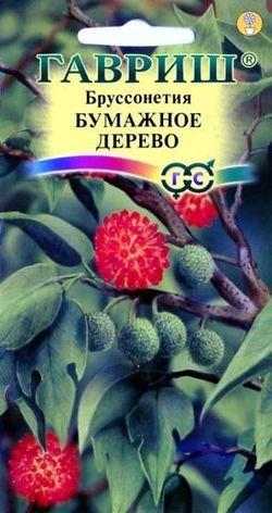 """Семена. Бруссонетия """"Бумажное дерево"""" (10 пакетов по 3 штуки) (количество товаров в комплекте: 10)"""