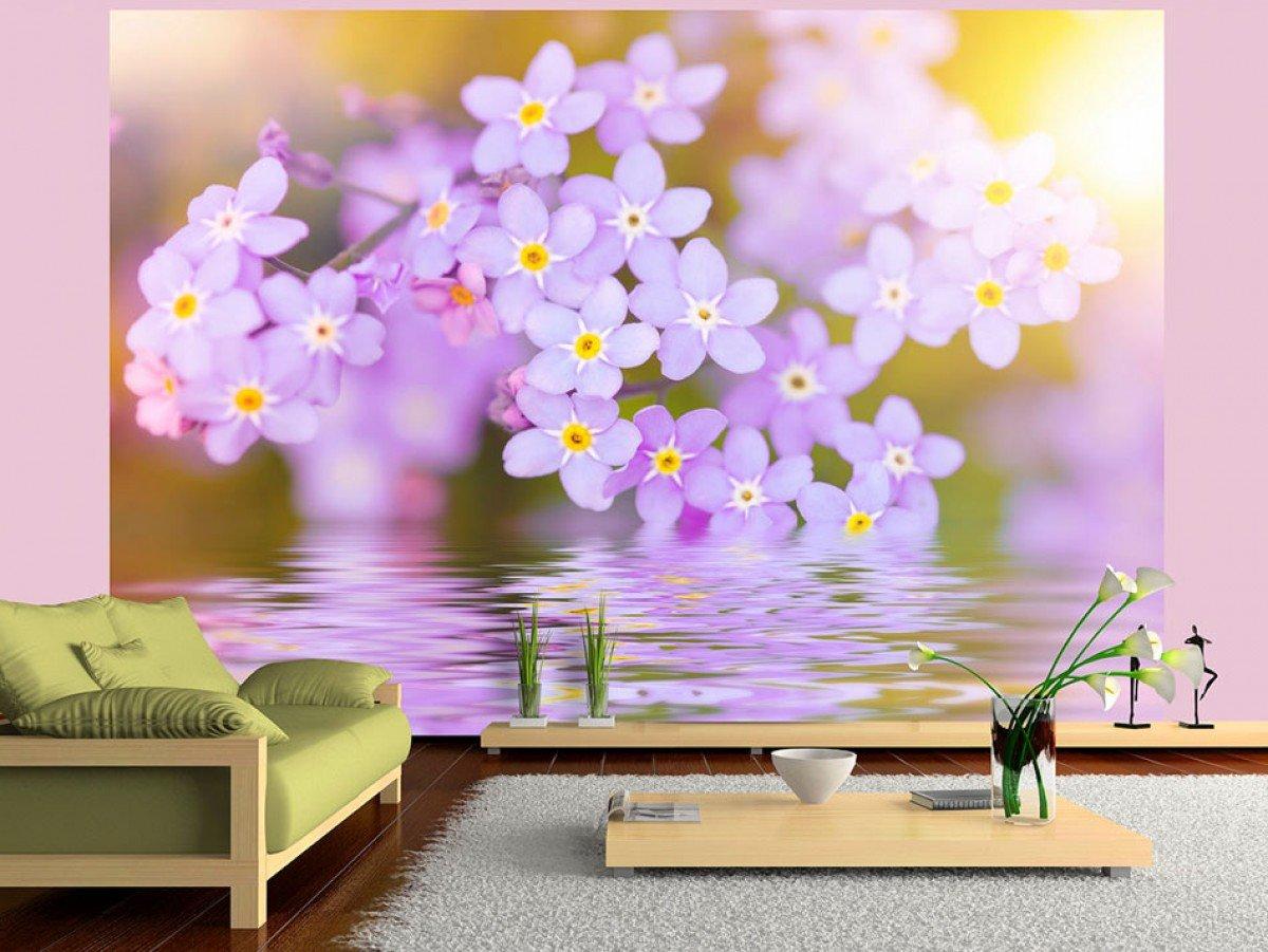 Фотообои «Фиолетовые, цветущие лепестки», 150x105 см