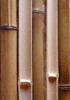 Половинка бамбука обожженная d 30-40мм L=2,8-3м
