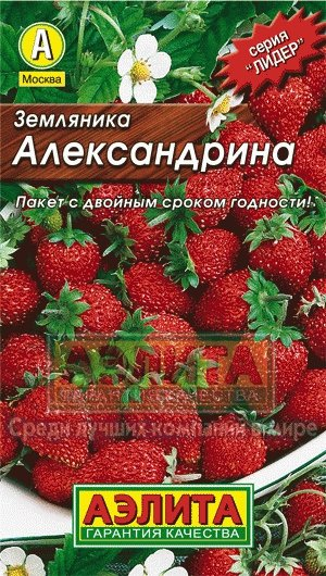 "Семена. Земляника ""Александрина"""