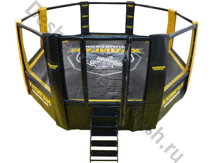 Восьмиугольный ринг (Октагон) на помосте (высота помоста 1 м, диаметр 5 м) DNN