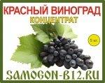 Виноград красный концентрат 5кг