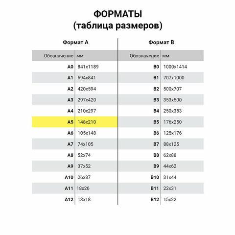 Тетрадь 18 листов в клетку Архангельский ЦБК