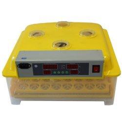 Инкубатор для яиц WQ-48 на 48 яиц с автоматическим переворотом (12/220В)