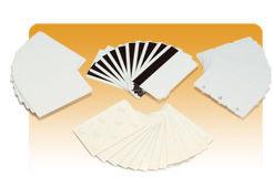 пластиковые карты evolis evolis / C2001 / белые карты, тонкий картон, 0.25мм - 10 mil, 5 упаковок по 100 карт