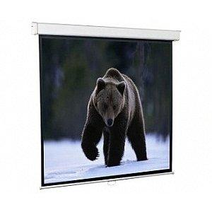 Экран для проектора Screenmedia economy-p 85 150x150 (150x150) 1:1 (spm-1101) mw настенный