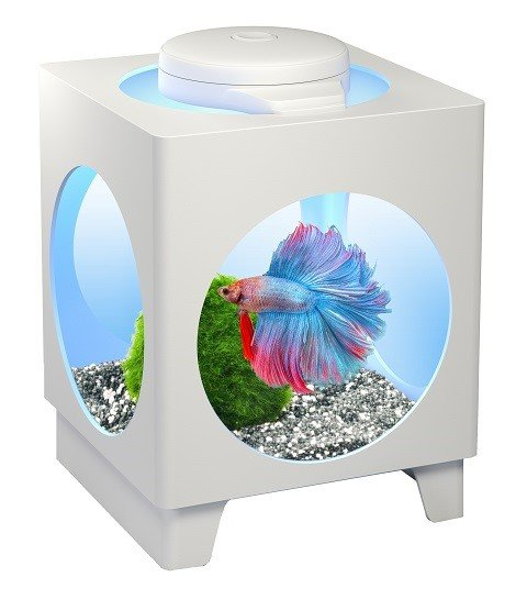 Аквариум Tetra Betta Projector, цвет белый, 1,8 литра New (1 шт)