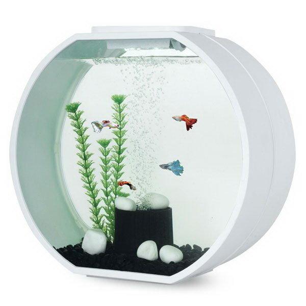 AA-Aquariums Аквариум DECO O 20л, 39,5х18,7х37,5см (белый)