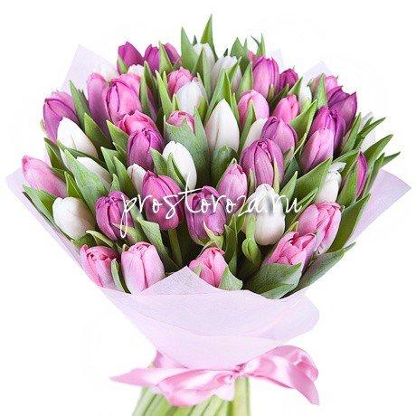 Букет из 35 белых и розовых тюльпанов (S3035)