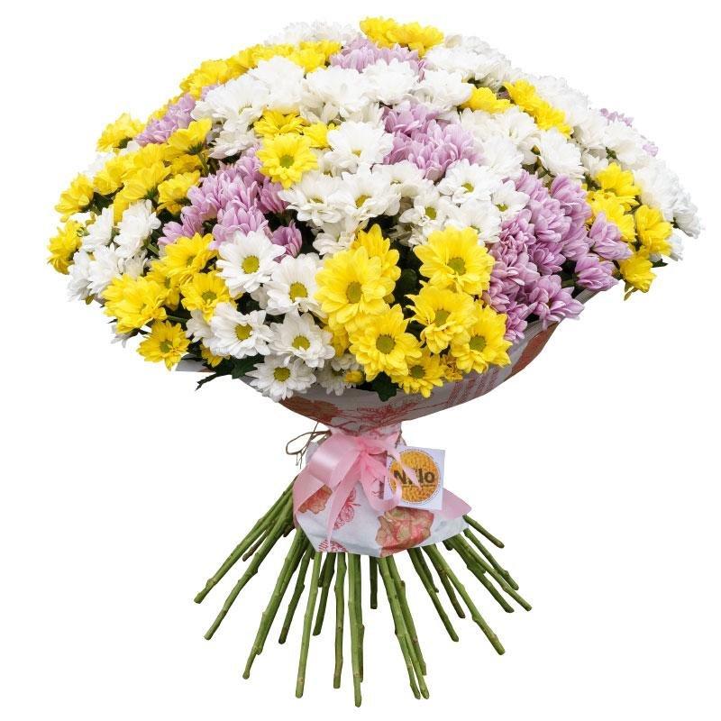 Цветы в архангельске