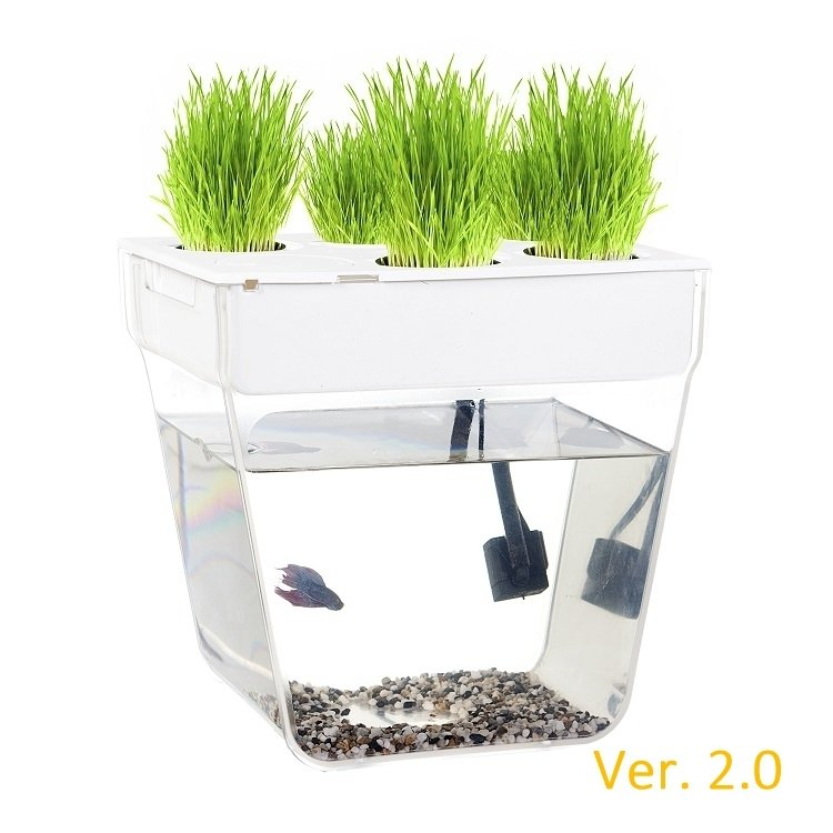 Набор для выращивания растений и ухода за рыбкой Акваферма AquaFarm