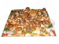 Сушилка для овощей Самобранка 50х50 пленочная