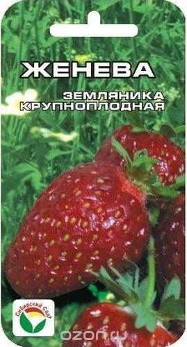 "Семена Сибирский сад ""Клубника. Женева"", 10 шт"
