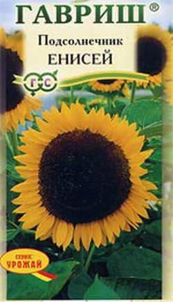 Семена Подсолнечник Енисей 10 г
