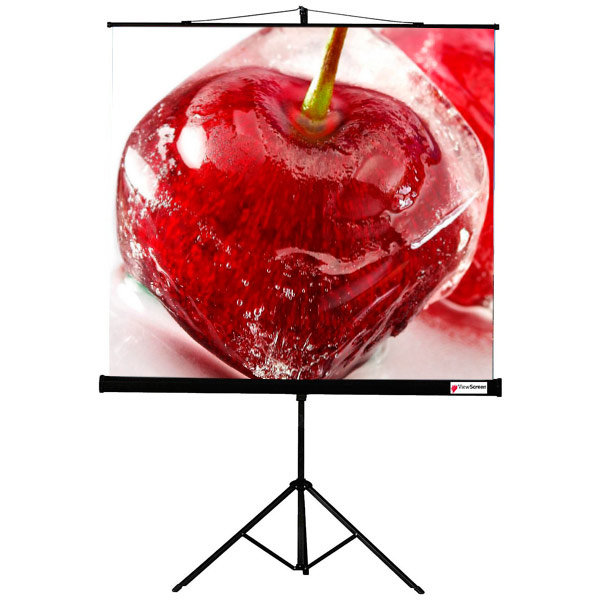 Экран для видеопроектора ViewScreen Clamp 1:1 150*150 MW (TCL-1101)