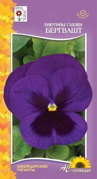 Цветы двулетние - Анютины глазки (фиалка виттрока) Бергвашт