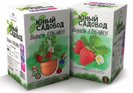 Набор для выращивания растений Инновации для детей Вырасти клубнику