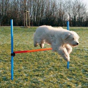 """Набор для аджилити для собак Trixie """"Jump"""", 1,29x1,15 м"""