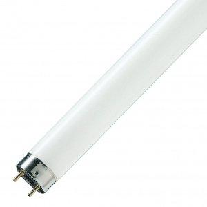 Люминесцентная лампа T8 Osram L 58 W/640 G13, 1500mm СМ (4008321959843)