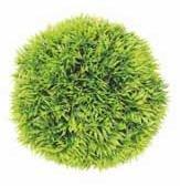Meijing Растение шар (зеленый) ? 12 см