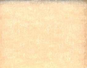 Лента контактная, 50 мм x 25 м, цвет: 5028 (бежевый), арт. 0150-2250