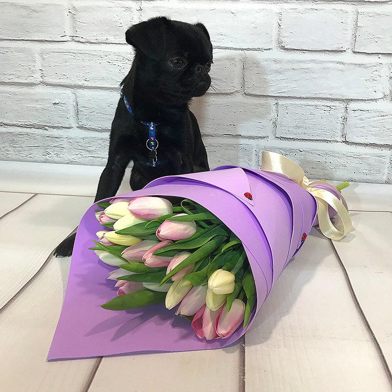 25 белых и сиреневых тюльпанов фоам