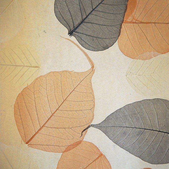 Обои натуральные Дизайн Тропик Листья PWF-24