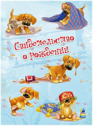 Обложки Диплома о высшем образовании купить в Санкт Петербурге  Обложка Филькина Грамота